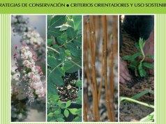 gestion de materiales forestales