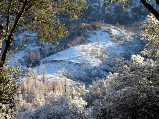 2016-2 February mountain slope in snow