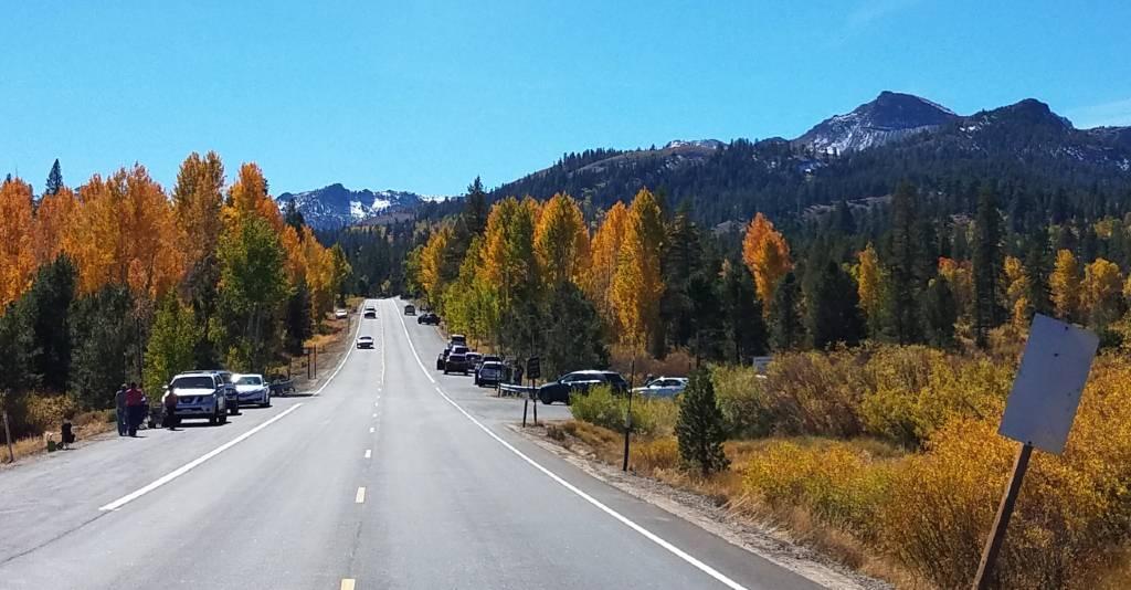 Fall Alpine County
