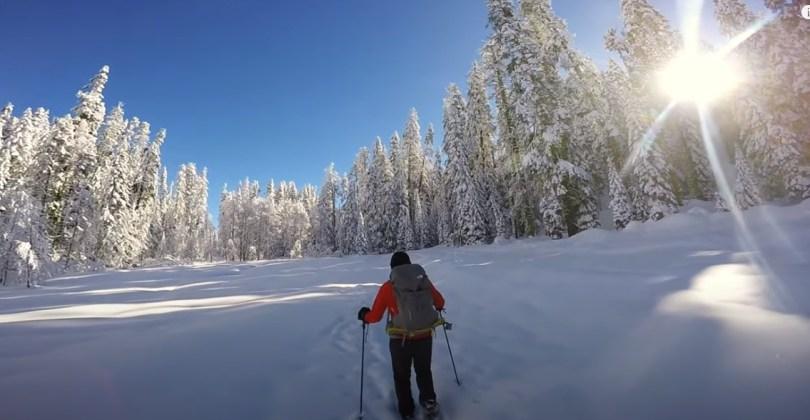 Snowshoeing Yosemite