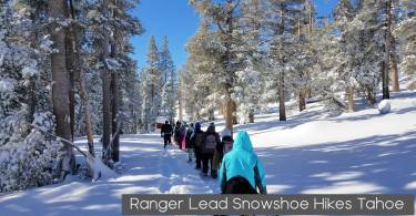 ranger lead snowshoe hikes taho