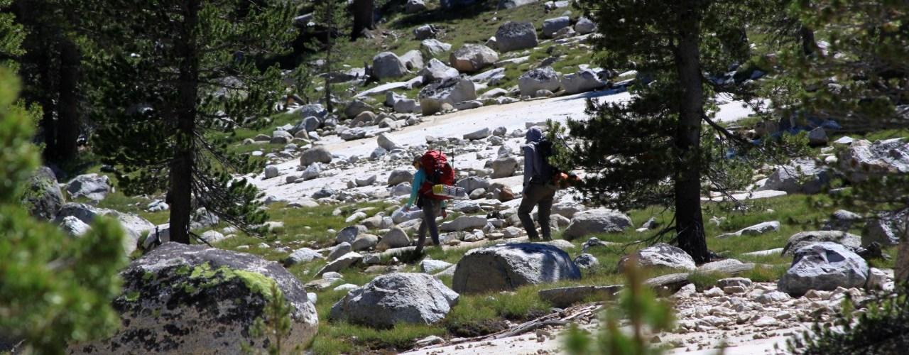 Backpackers Yosemite Lyell Canyon