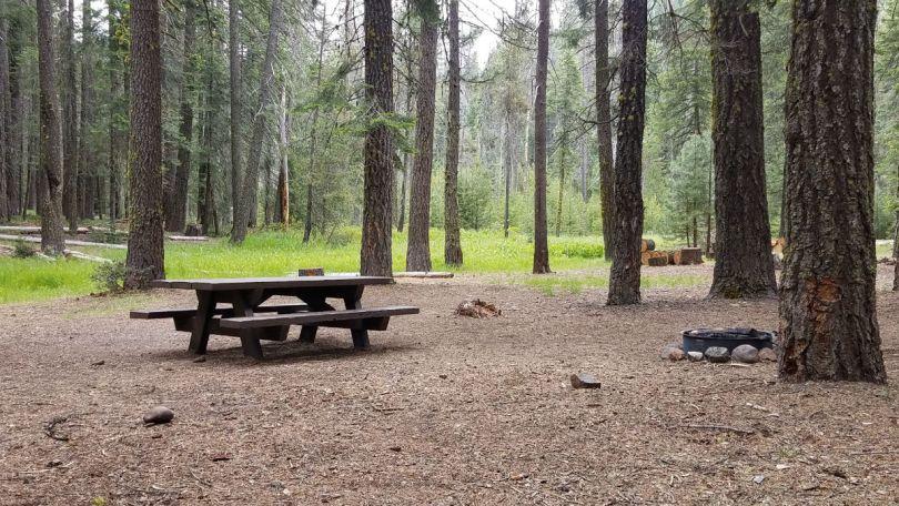 California Campground - Near Lassen Volcanic National Park