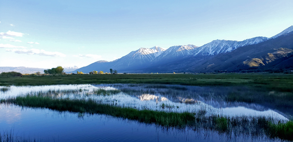 Carson Valley reflection