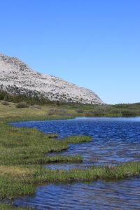 Yosemite National Park Mono Pass