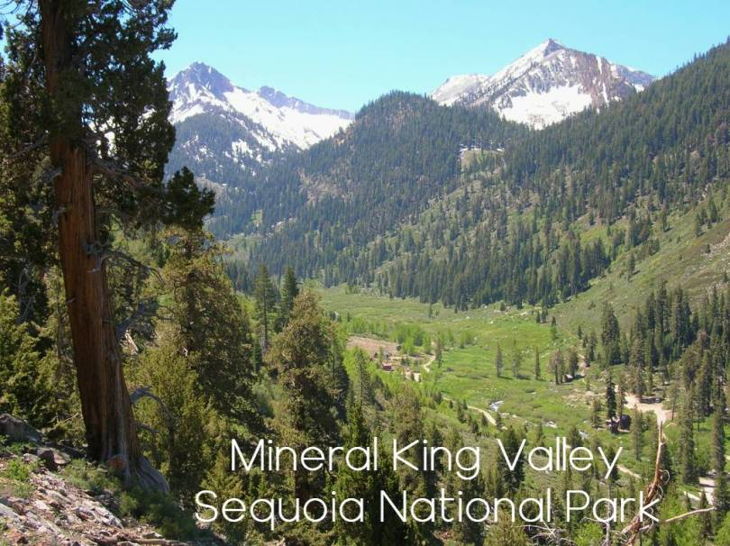 Mineral King valley sequoia national Park