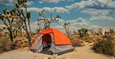 What To Know Before Camping in the Desert