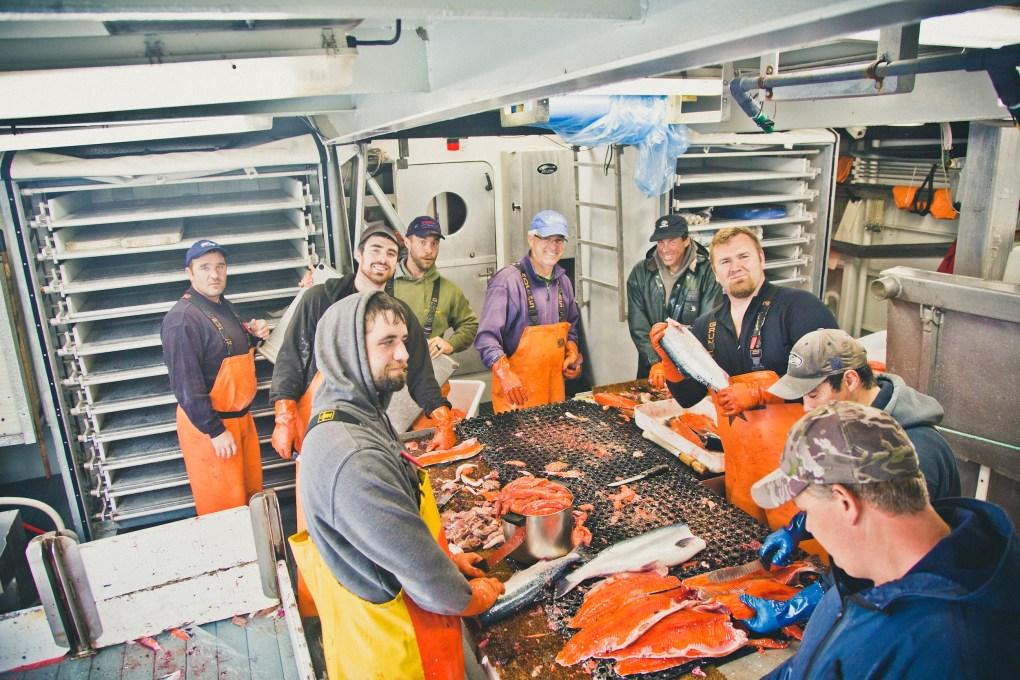 chignik catch processing alaskan seafood