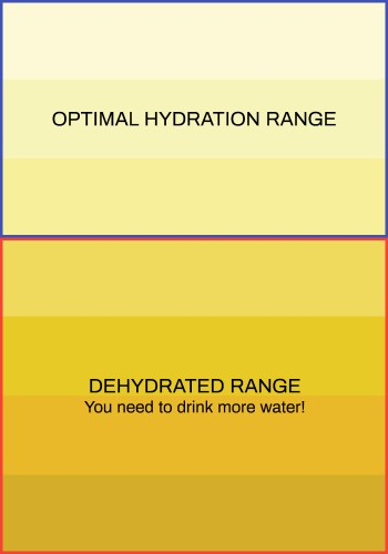 Urination chart indicating how well-hydrated a person is