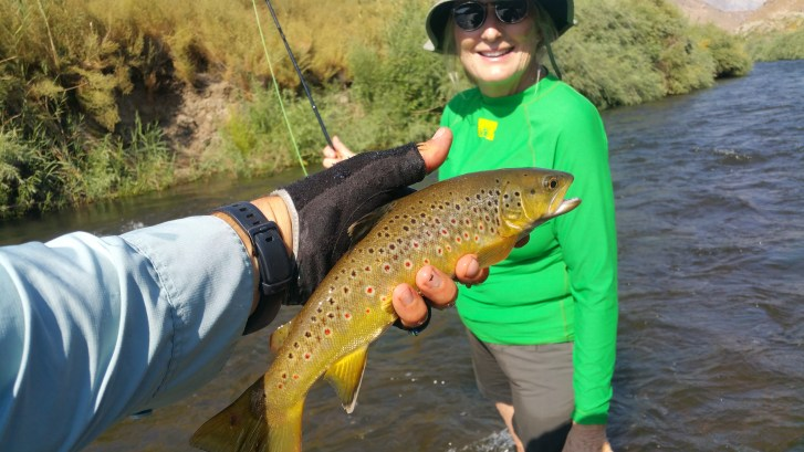 Fly fishing on the Lower Owens River summer 2017