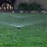 Sprinkler-2