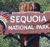 sequoia national park sign with indian head (2)