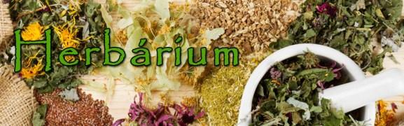 cover_herbarium