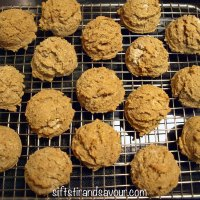 PUMPKIN CHEESECAKE BITES- Vegan, Gluten-Free & Refined Sugar-Free