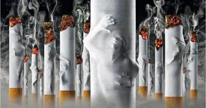 pierde țigări grase