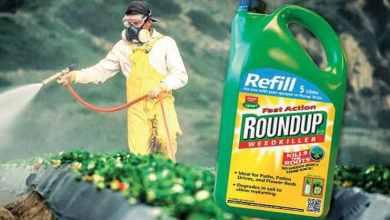 Photo of Erbicidul Roundup produs de Monsanto este cancerigen (decizie a Curții de Apel din California)