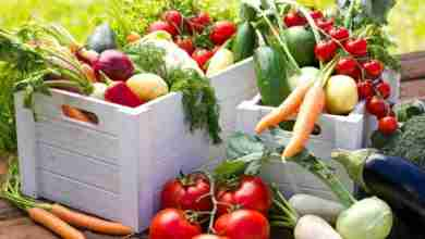 Photo of Ce alimente sa consumi pe timpul verii