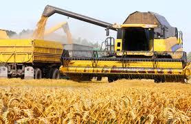 Photo of Guvernul reînvie Cooperativele Agricole de Producţie. Precizările ministrului Agriculturii