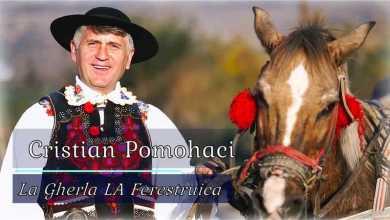 Photo of Fostul preot Cristian Pomohaci a fost condamnat definitiv la închisoare cu suspendare