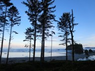 Just after sunrise on Ruby Beach olympic national park
