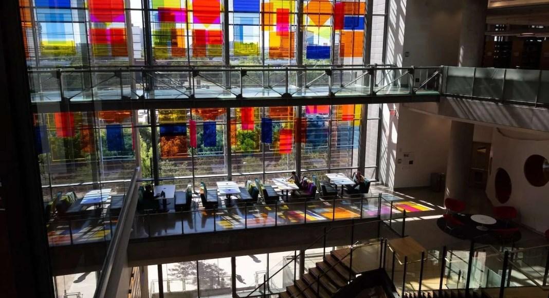 Susan Scafati library installation