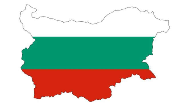 Bulgaria starts formal process to find investor for Belene project