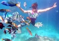 Redang: Underwater photography
