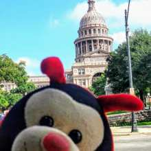 Travel Bug's 3 Fascinating Facts about Austin