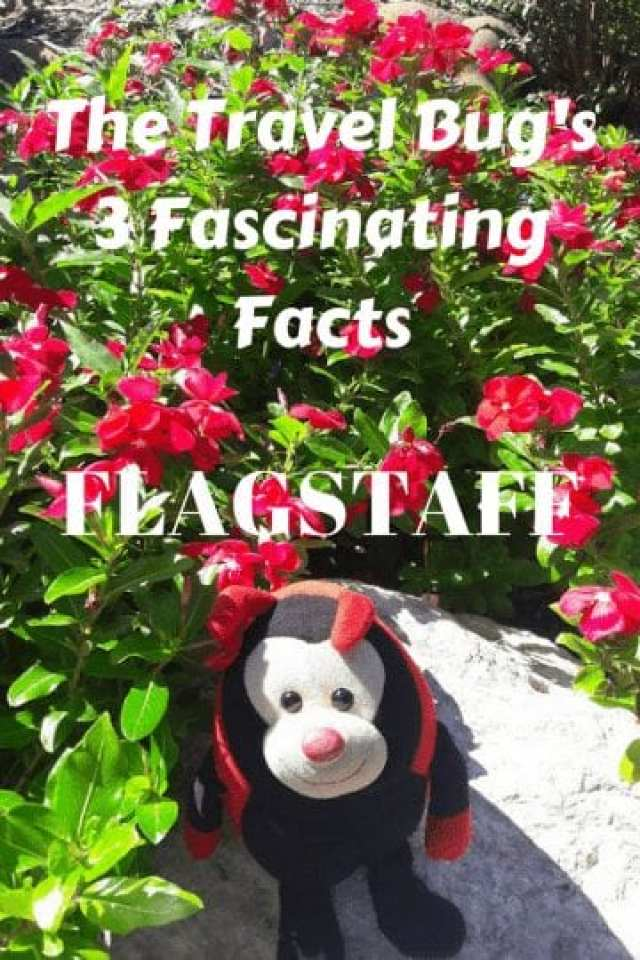 Flagstaff: Travel Bug's 3 Fascinating Facts