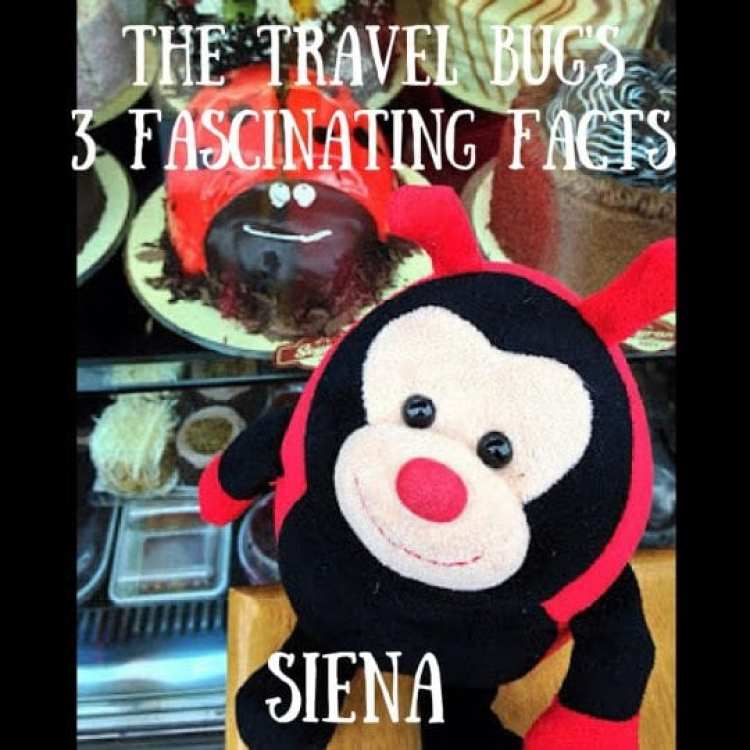 fascinating facts about siena