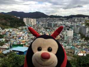 fascinating facts about busan