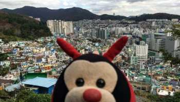 Travel Bug's 3 Fascinating Facts