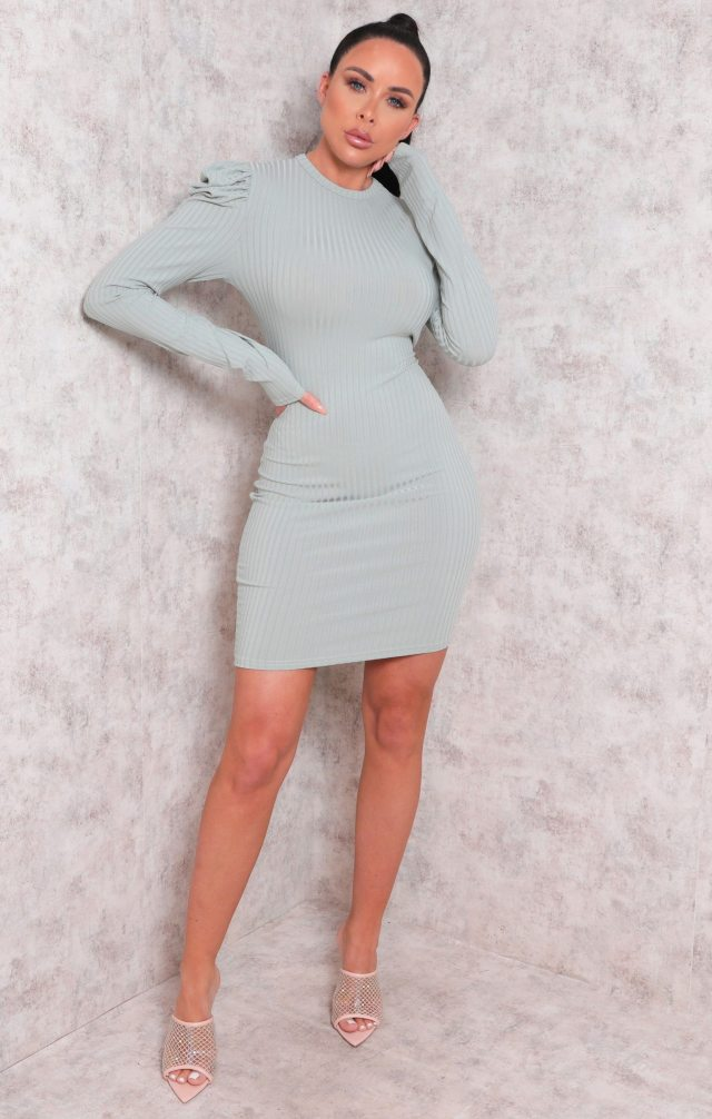 https://femmeluxefinery.co.uk/products/mint-long-sleeve-ribbed-bodycon-mini-dress-peggy