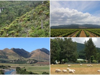 An Instagram Tour of New Zealand