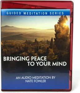 Bringing-Peace-To-Your-Mind-boxshot-final