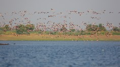 150-600 by Kunal Khadse 3