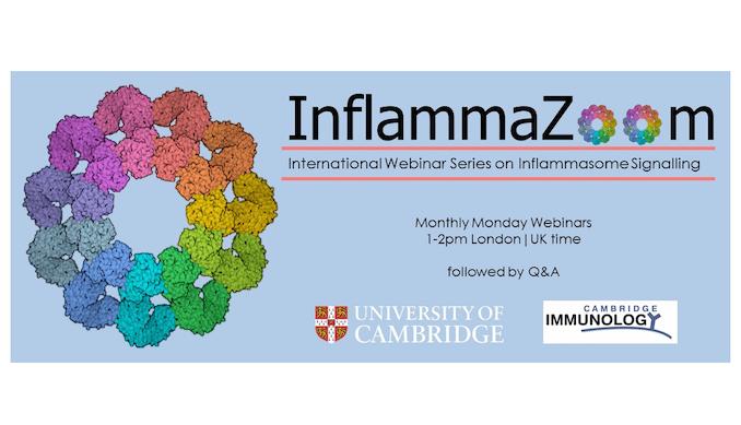 InflammaZoom