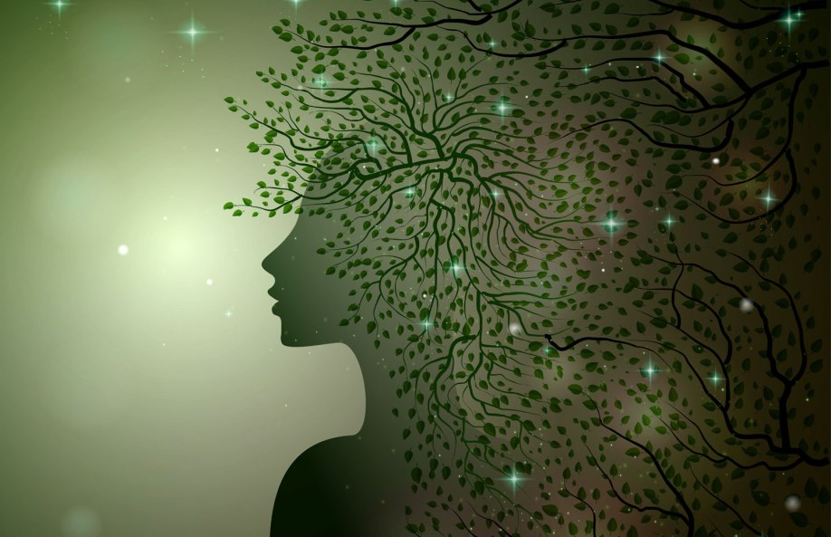Tree Symbolism And Tree Meaning For Guidance On Whats Your Sign