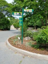 directional-parking-signs-0818-h