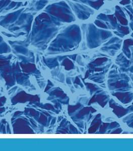 bluediffusion- Legacy Liner
