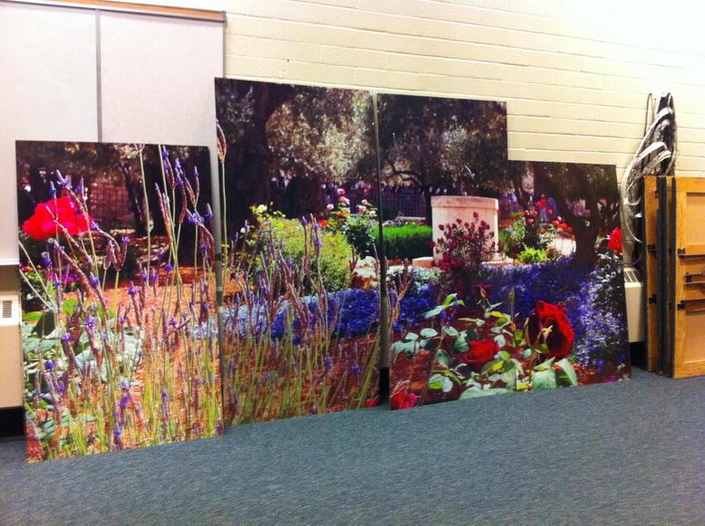 Sherwood Park Canvas Prints