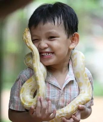 que-significa-sonar-serpiente-se-come-mi-hija