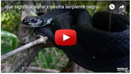 significado sonar con una serpiente negra
