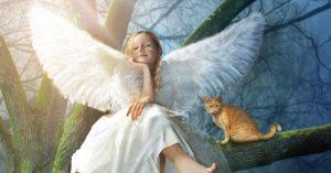 Repita Essa Oração Para Se Conectar Com Seu Anjo Da Guarda Todas As Manhãs