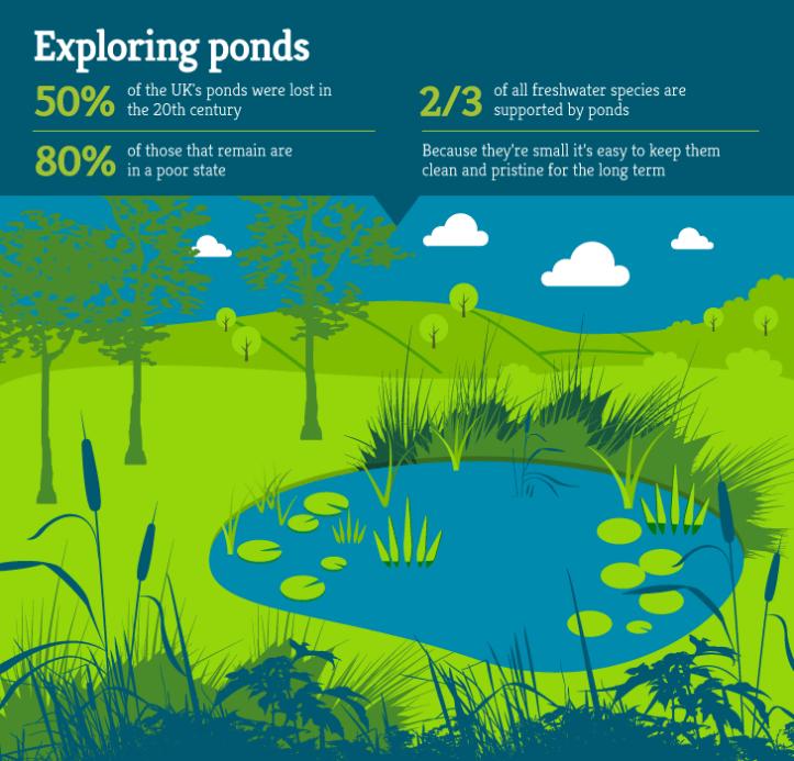Habitat-map-sections-pond2