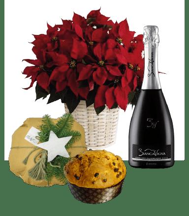 stella+vino+panettone classico_Tavola disegno 3-01-01