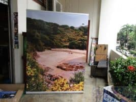 1.5 x 2m pull up banner - scenery