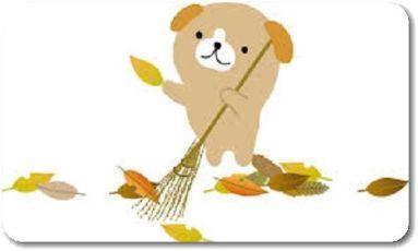 大掃除を11月から始めるべき3つの理由とメリットを紹介!