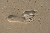 whose footstep is this?