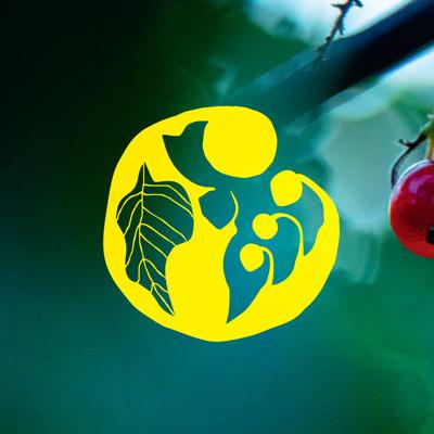 Logo design, Samsoe Baer